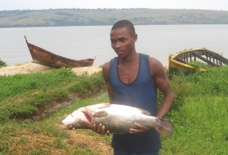 Nile perch provides income for fishers